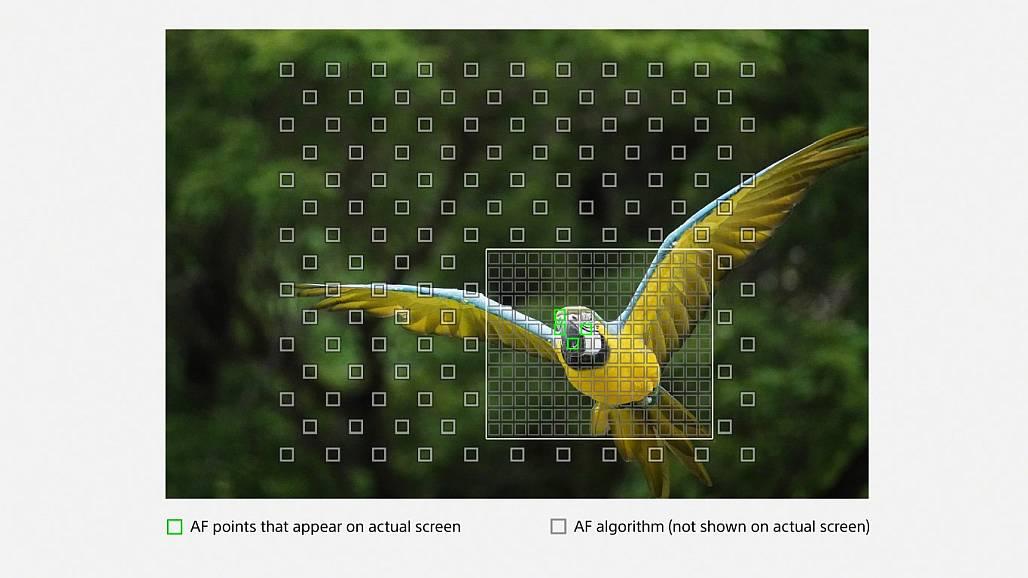 Sony RX10 IV High-density Tracking AF